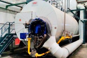 Subcarn caldera gas transformación de subproductos animales de Catagoría 3