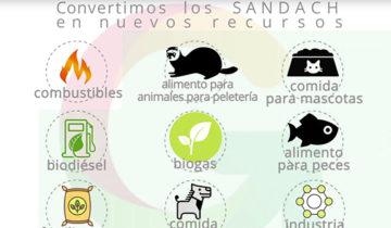 sandach y la economía circular congreso epfra